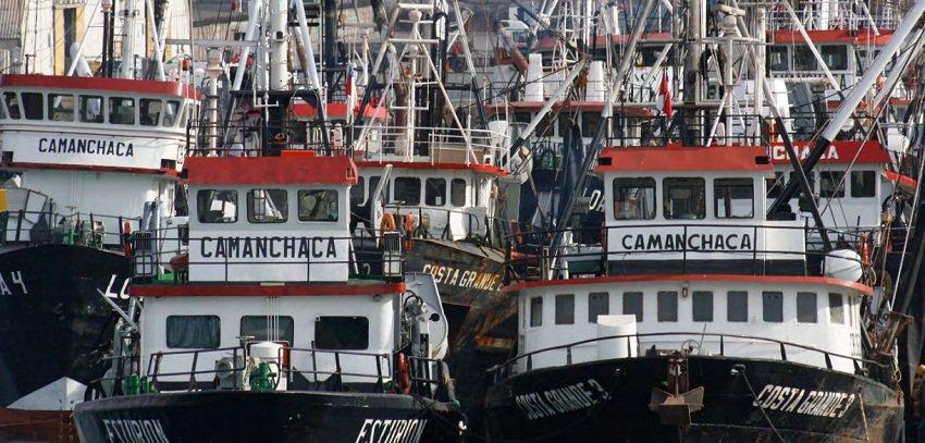 Pesquera Camanchaca obtuvo la certificación Friend of the Sea para harina y aceite de pescado