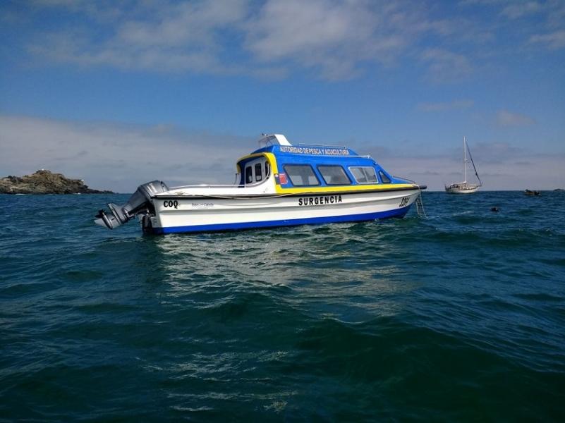Sernapesca estrenó embarcación de vigilancia en reservas marinas islas Choros-Damas y Chañaral