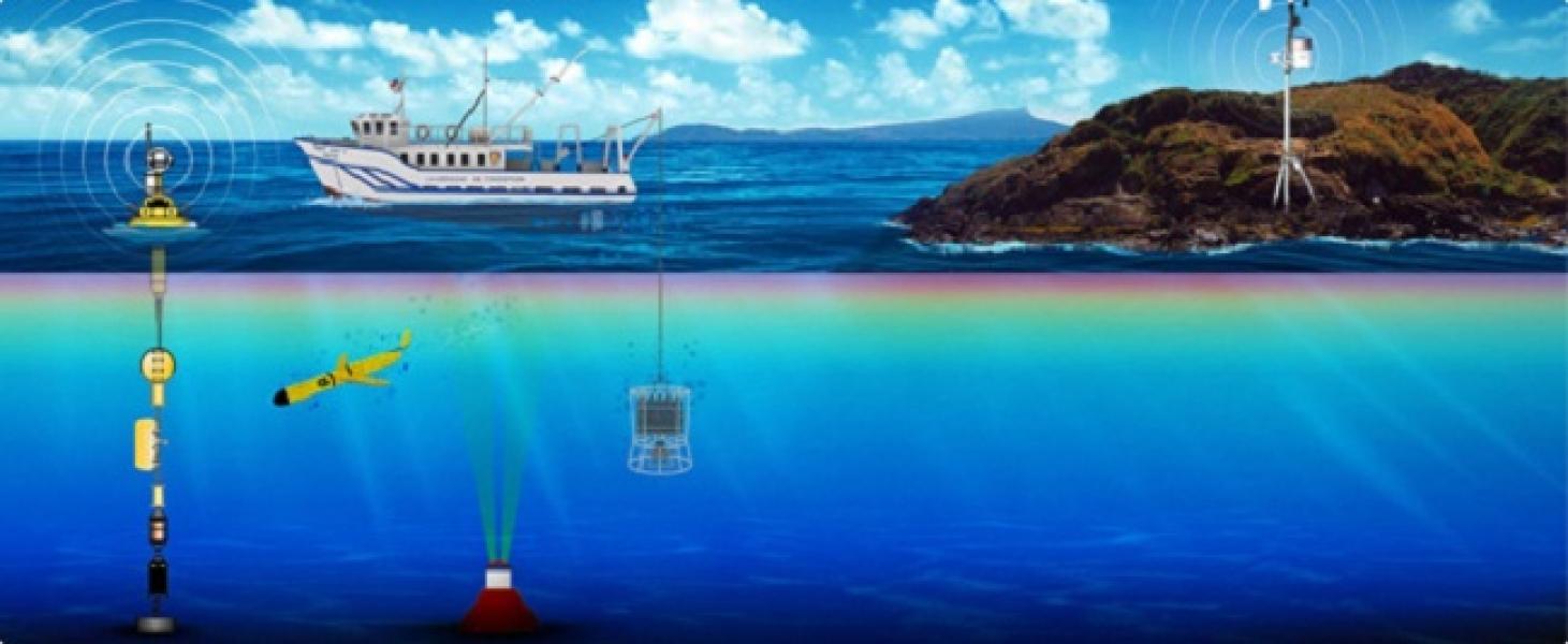 CDOM: la innovadora plataforma chilena que entrega datos meteorológicos y oceanográficos en línea