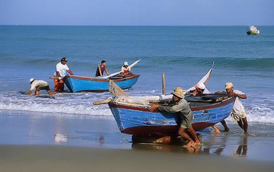 Aprueban proyectos para pescadores artesanales por $1.600 millones