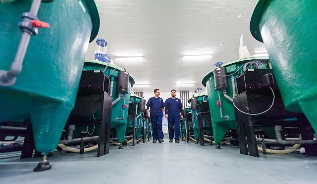 Centro de Innovación de Cargill en Colaco celebra un año de investigación en acuicultura