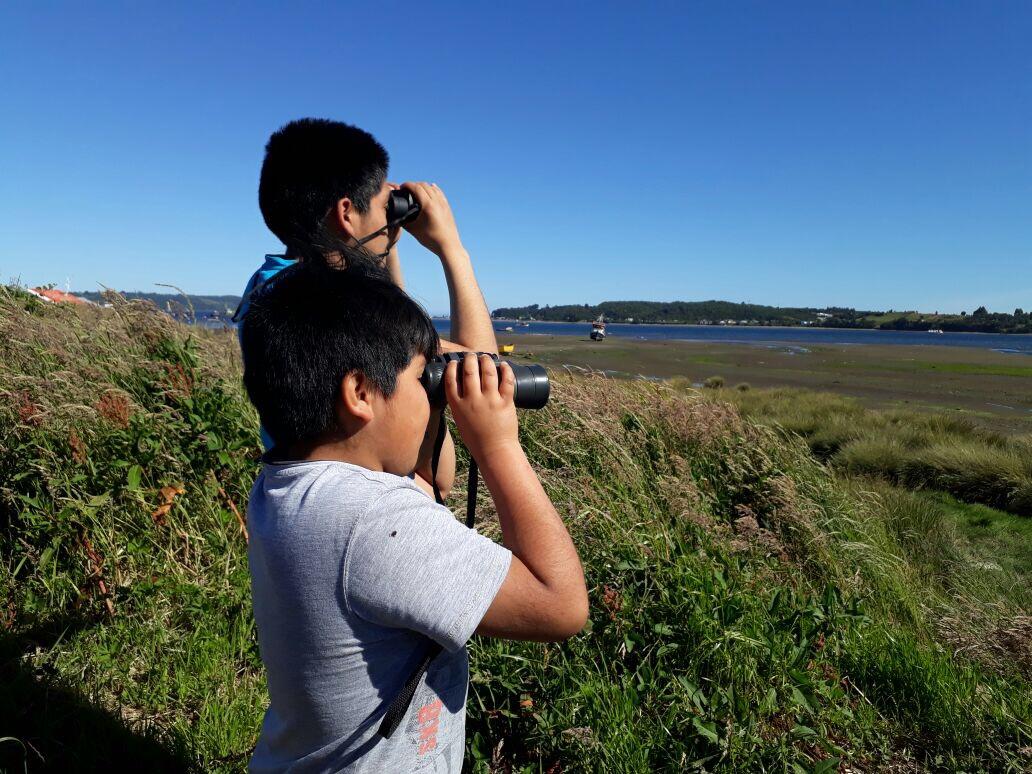 Con apoyo de Los Fiordos iniciativa busca rescatar los humedales de Quellón
