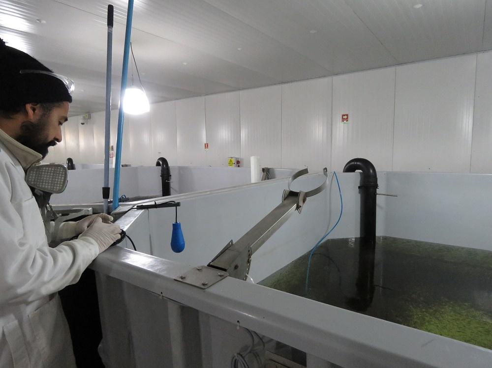 Mundo Acuícola realiza gira por la zona donde se produce el salmón más austral del mundo
