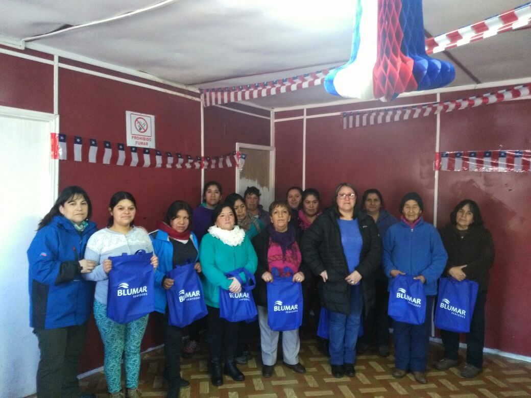 Durante 2017: en Talcahuano y Aysén 168 vecinos se capacitaron en oficios gracias a Blumar