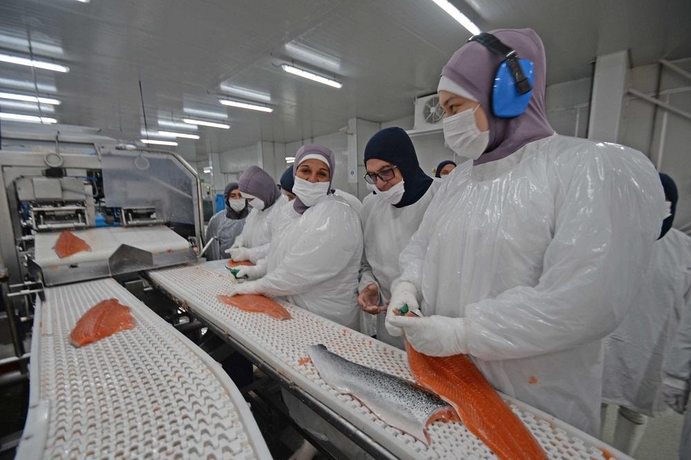 Intendente Jürgensen y seremis de la Mujer y Trabajo visitan planta de proceso de AquaChile