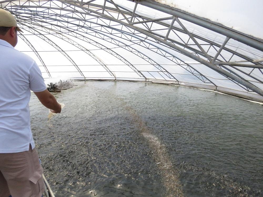 Con visita a filial de AquaChile Mundo Acuícola inició gira por Centroamérica