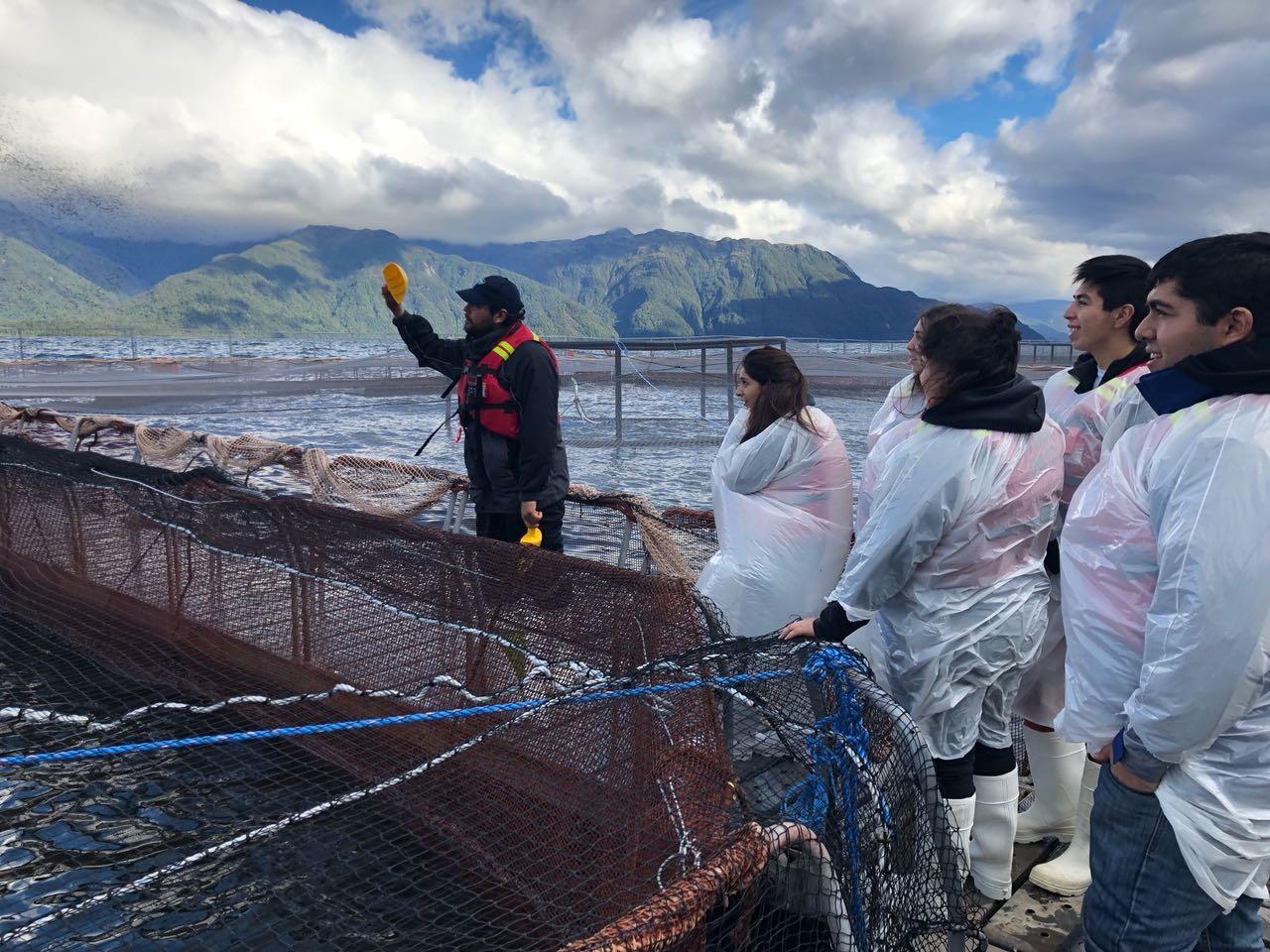 En Aysén: estudiantes de acuicultura refuerzan su formación con visita a centro de cultivo de salmones
