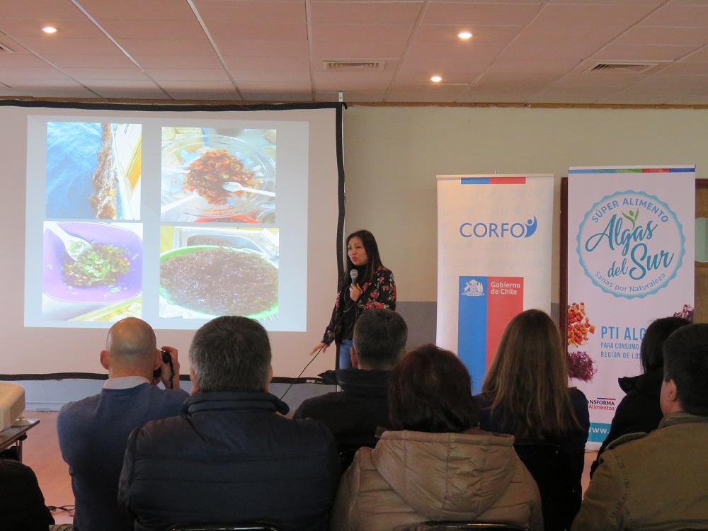 Destacan oportunidades para algas de consumo humano tras proyecto Corfo que buscó potenciar cultivo y comercialización