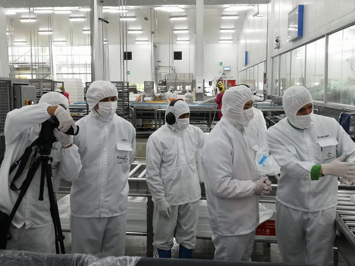 """Cancillería y el salmón: """"Hay un impacto en la confianza de los consumidores chinos"""""""
