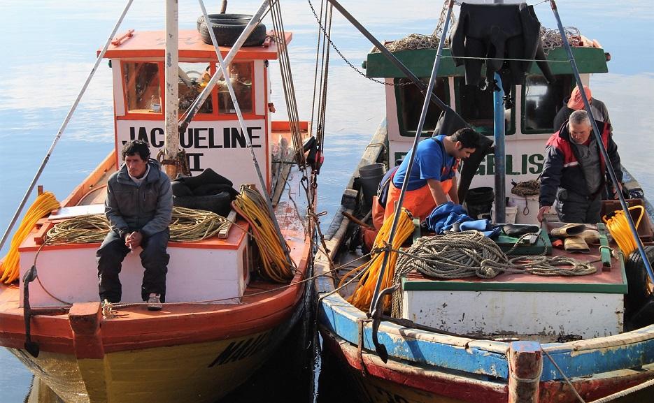 Comisión de Pesca de Cámara de Diputados aprobó proyecto de apoyo a sector para enfrentar efectos del Covid