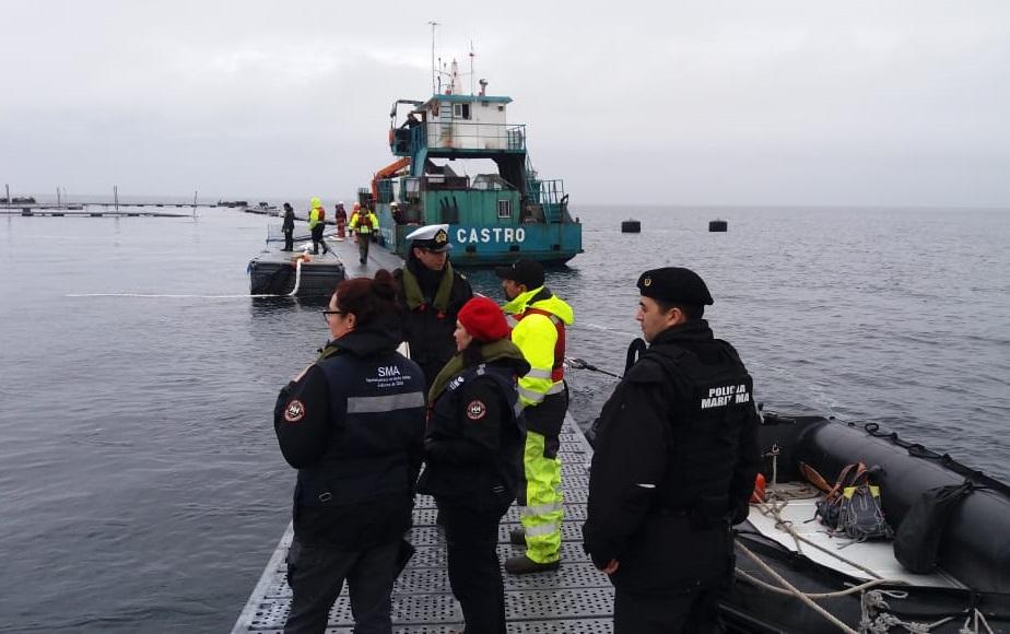 SMA sanciona con histórica multa a MOWI Chile tras escape masivo de peces ocurrido en 2018