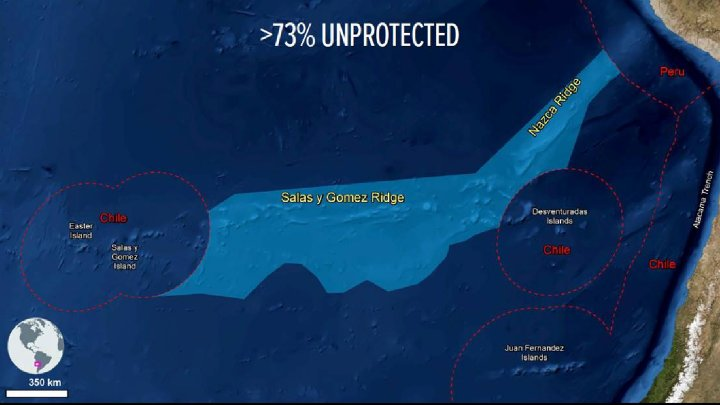 Investigador de la UV participa en propuesta para aumentar la protección de zona marina