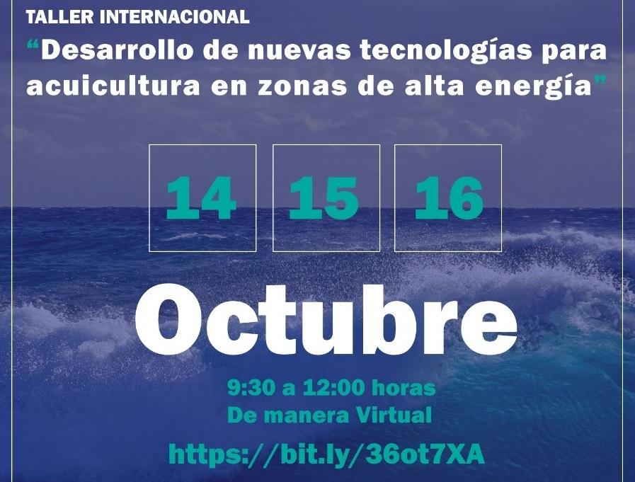 Más de 197 participantes en primera jornada de taller internacional sobre nuevas tecnologías para acuicultura en zonas de alta energía