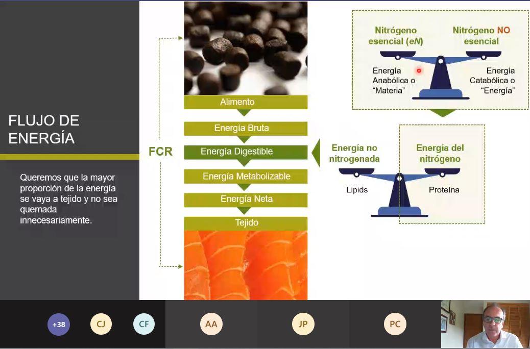Productora de alimento para peces presenta su última innovación en nutrición